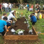 Opening of Ley Hill Community Allotment