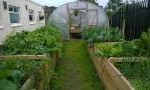 Glen Community Garden