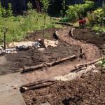 A summer of garden activities
