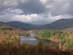 Autumn colours in Queen Elizabeth Forest, Nr Aberfoyle