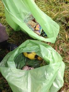 litter survey bags