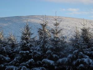 Glenlude snow