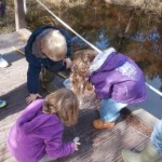 Pond dipping at Beinn Eighe