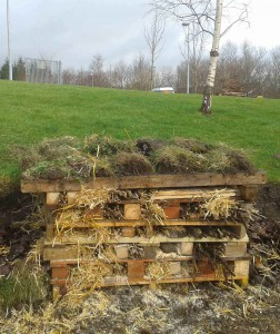 bug hotel integrated school (low res)