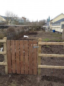 Campsie allotments 2 (low res)