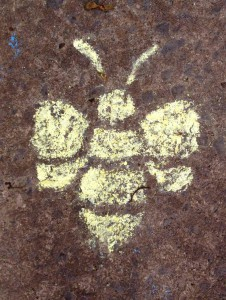 Bee-chalk-Forthill-day-(low-res)