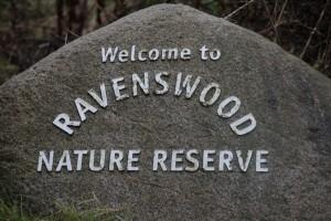 Ravenswood volunteer (66) small