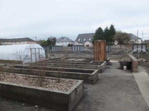 The Shettleston Community Growing Project