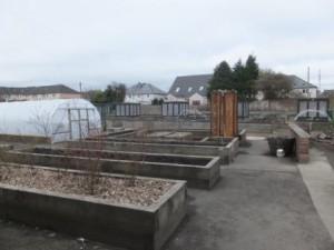 The Shettleston Community Growing Project