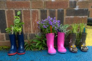 I smell a smelly welly! Planting for the senses.