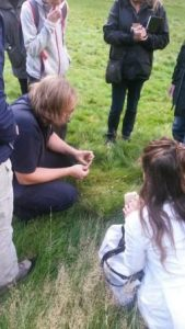 Stephen wowing us with his wildflower knowledge