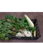 Vegetables anyone?