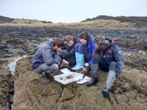 I went out with the TCV Coastal Community Trainees for a day in Gullane. We worked hard in the morning on unblocking a nearby stream before enjoying a rocky shore explore in the afternoon.