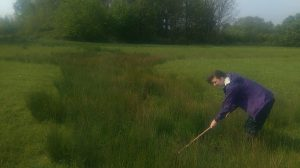 Sampling a full grip - drainage ditches that temporarily fill with water