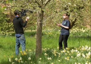 Talking about the importance of pollinators to Norton Priory film crew - feeling like David Attenborough for the day!