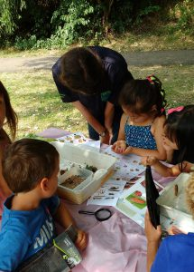 Hands on slug, snail and other invertebrate fun!