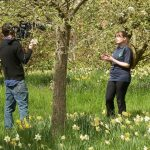 May: filming, meadow surveys and hoverflies