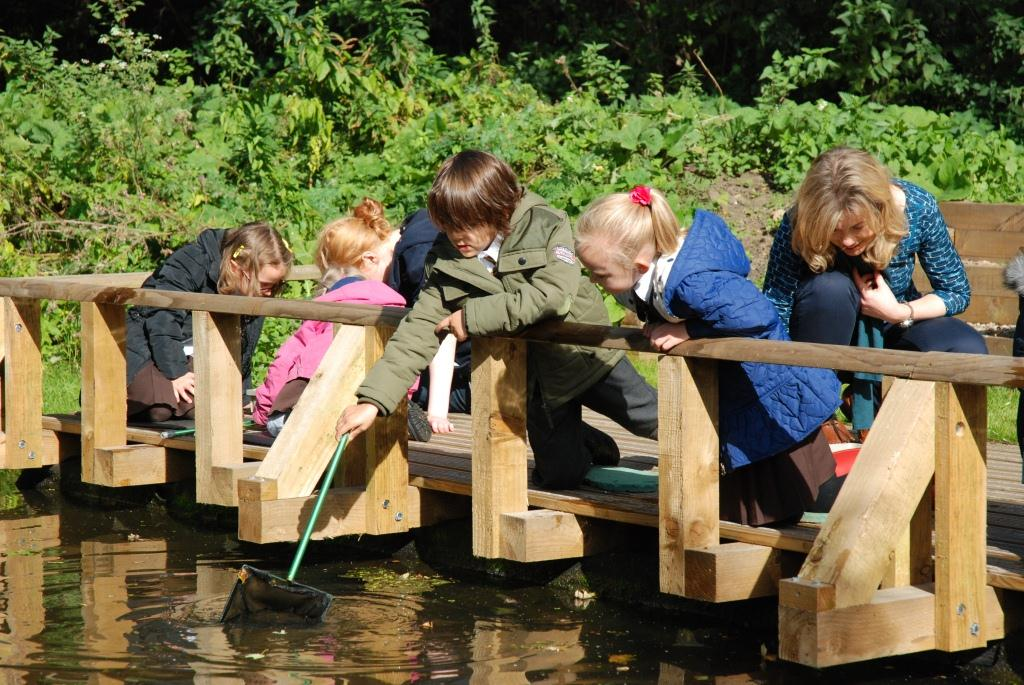 Children pond dipping at Skelton Grange