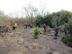 The team busy clearing litter