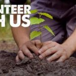 My first months as a Volunteer Officer at TCV Skelton Grange Environment Centre…