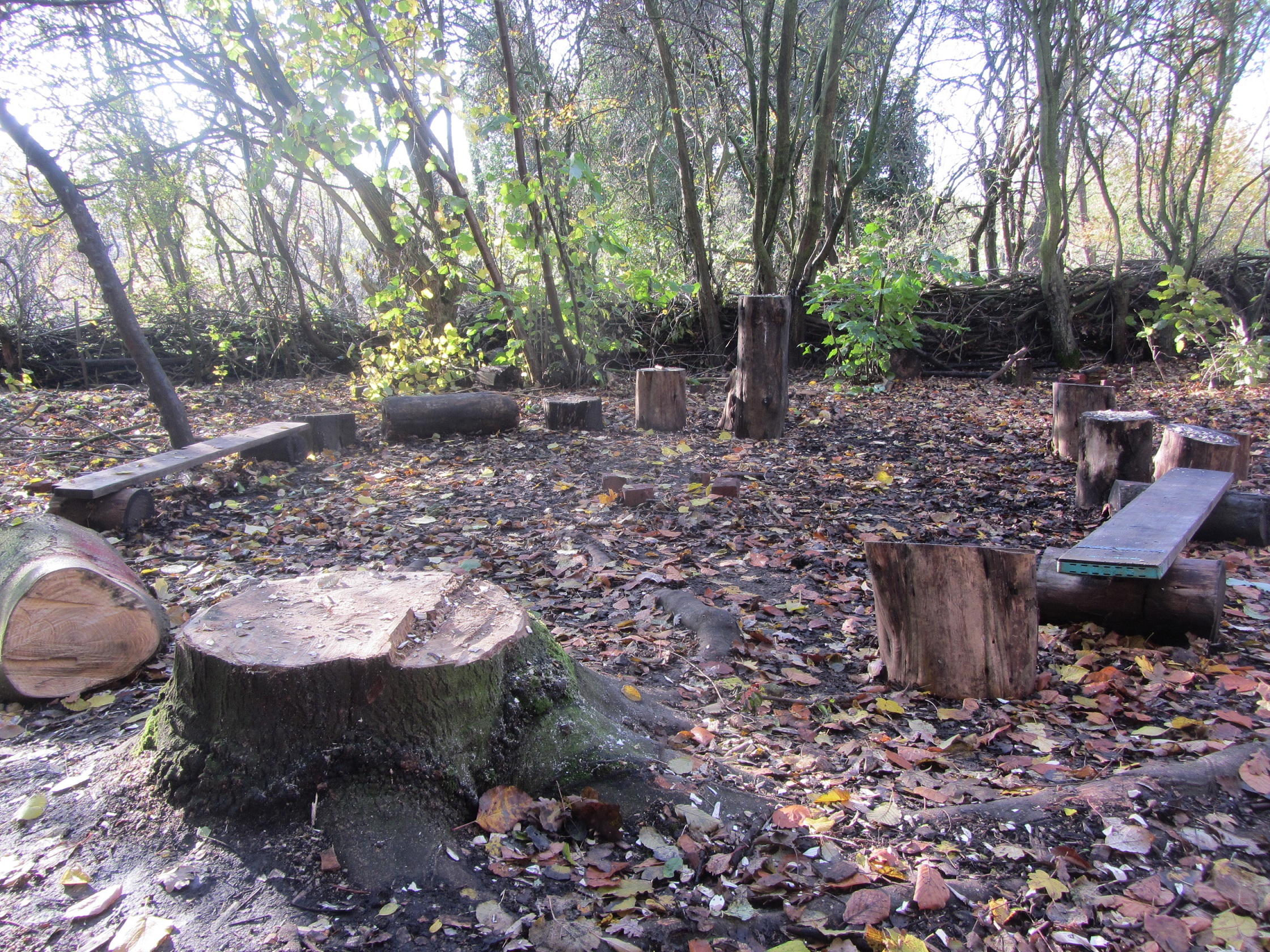 Outdoor classroom at Skelton Grange