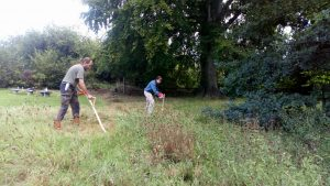 Volunteers Scything the meadow