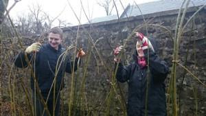 Winter willow fun blog