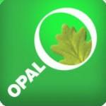Citizen Science – OPAL Tree Health Survey mobile app!