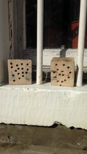 Wee homes for some lucky bees and insects
