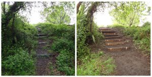 Timber steps before and after - WOW!