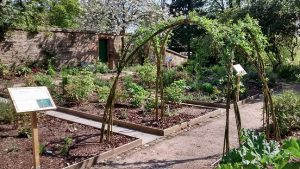 willow arch in walled garden small