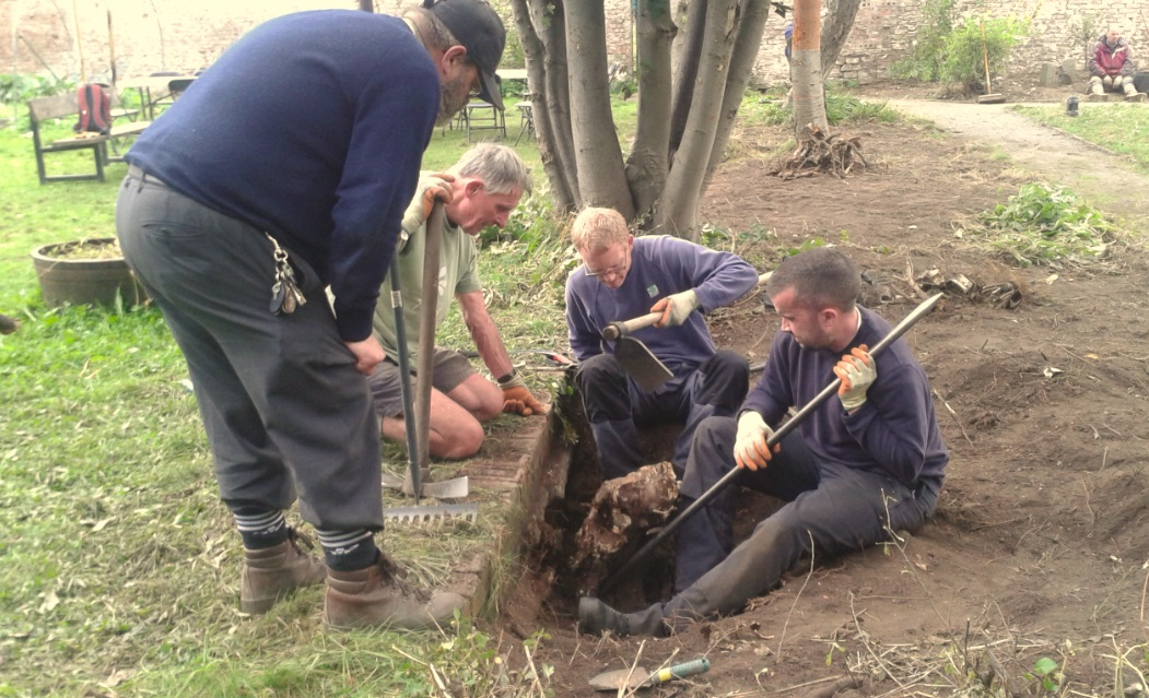 The team tackling a very stubborn tree stump!