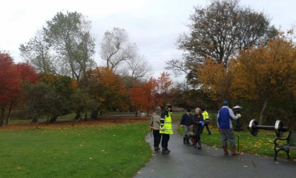 Another beautiful autumnal scene at Figgate Park