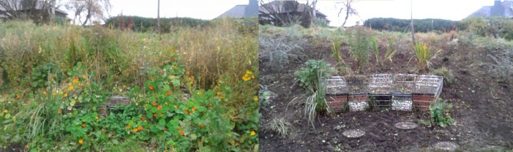 Before and after of our work at Figgate Park