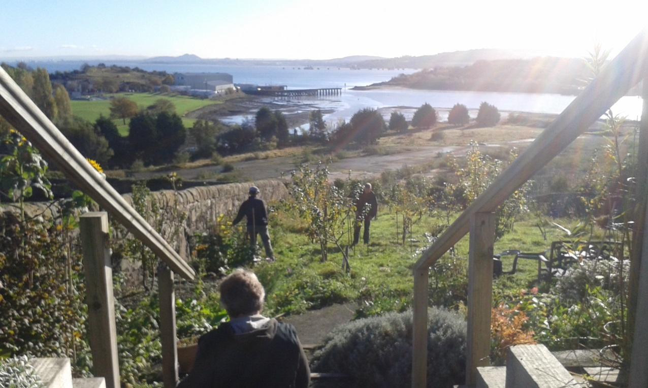 The amazing view from the Friary Community Garden