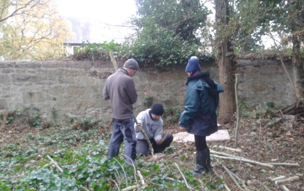 Creating stakes for a dead hedge at Warriston Cemetery