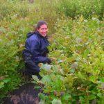 June 2014 – Weeding, Weeding and Watering