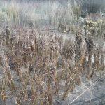 November 2014 – Time to Prepare for Winter