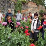 A Nursery in Bloom – Summer 2015