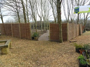 The willow fence being put up
