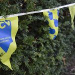 Bunting in a hedge