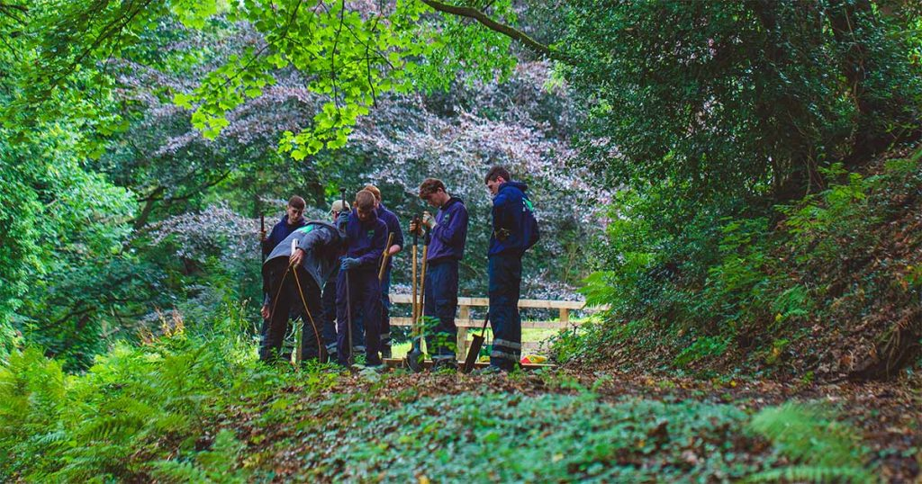 TCV trainees working in a woodland