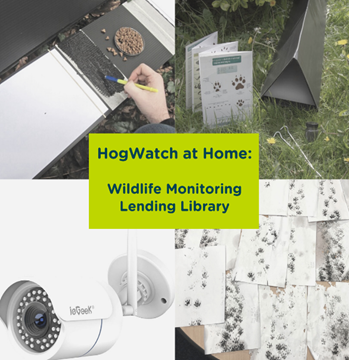 HogWatch At Home