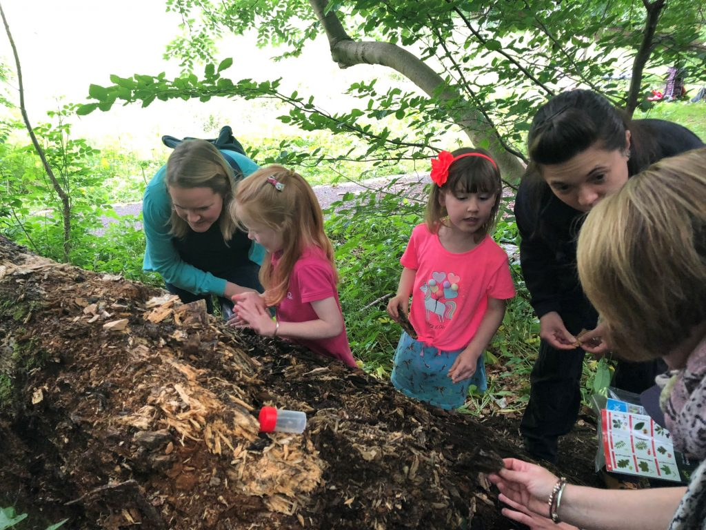 Children and adults identifying species on a log