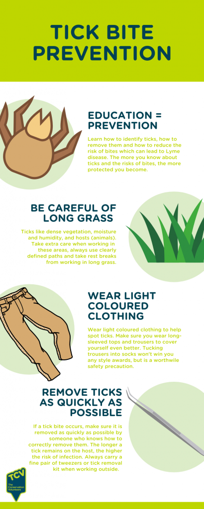 Infographic to prevent bites from ticks