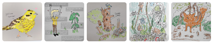 Jozef's illustrations as a TCV WildSkill trainee