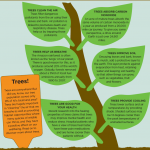 6 reasons why trees are important