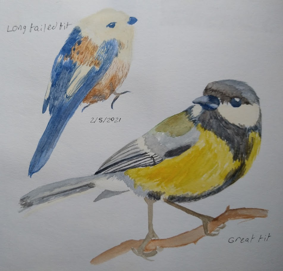 Watercolour of a long tailed tit and great tit