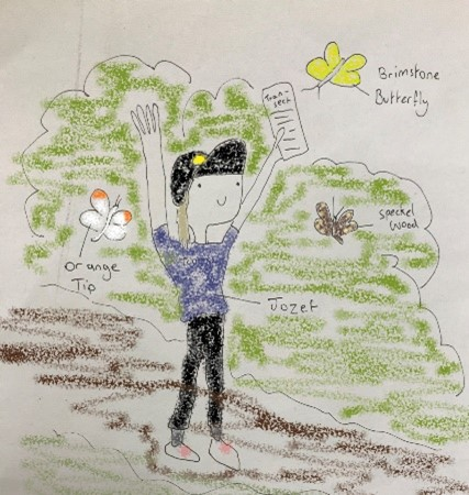 Hand drawn picture of task to spot butterflies during conservation traineeship