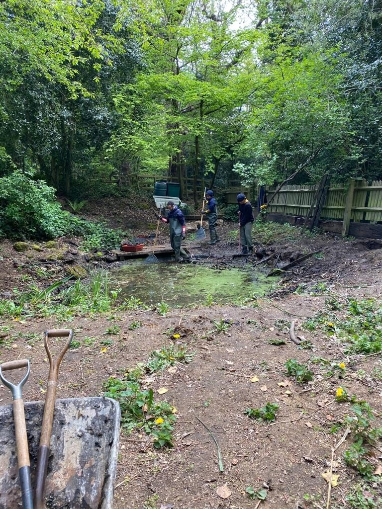 Pond clearing as part of conservation traineeship